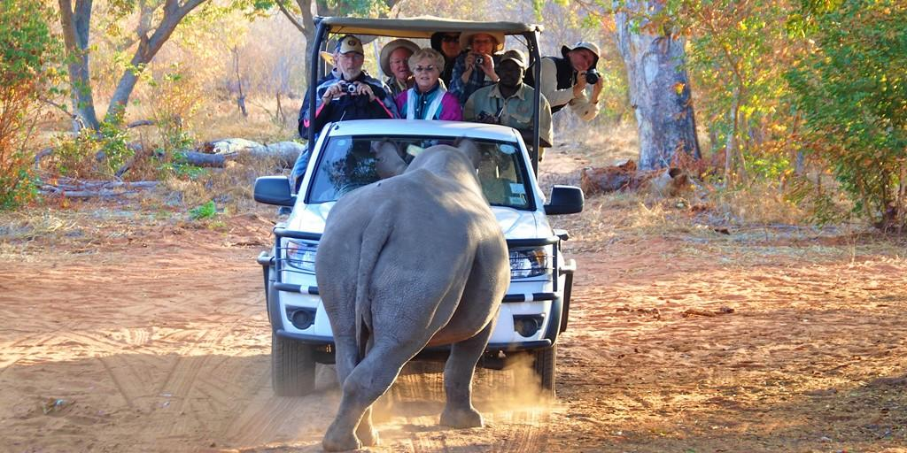Luxury Golf & Safari